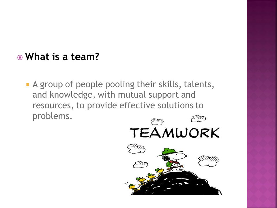  What is a team?  A group of people pooling their skills, talents, and knowledge, with mutual support and resources, to provide effective solutions