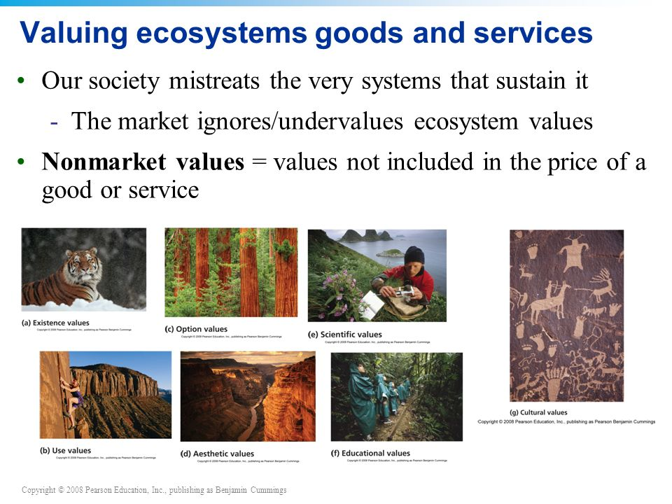 Copyright © 2008 Pearson Education, Inc., publishing as Benjamin Cummings Valuing ecosystems goods and services Our society mistreats the very systems that sustain it -The market ignores/undervalues ecosystem values Nonmarket values = values not included in the price of a good or service