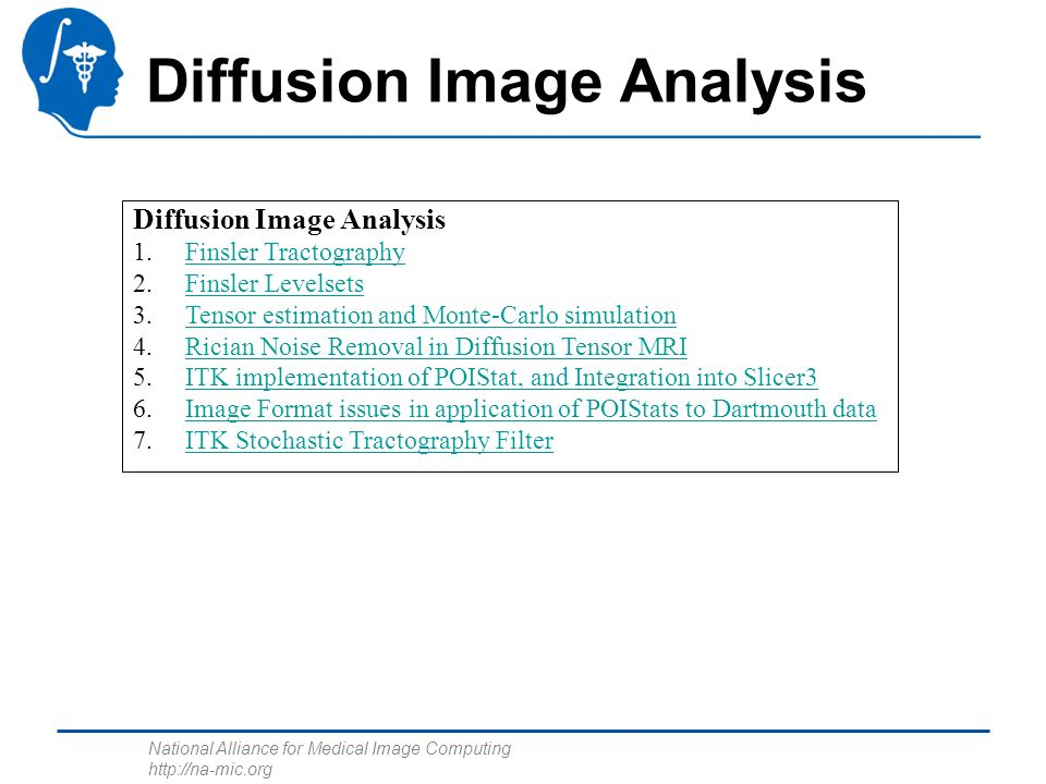 National Alliance for Medical Image Computing http://na-mic.org Diffusion Image Analysis 1.Finsler TractographyFinsler Tractography 2.Finsler LevelsetsFinsler Levelsets 3.Tensor estimation and Monte-Carlo simulationTensor estimation and Monte-Carlo simulation 4.Rician Noise Removal in Diffusion Tensor MRIRician Noise Removal in Diffusion Tensor MRI 5.ITK implementation of POIStat, and Integration into Slicer3ITK implementation of POIStat, and Integration into Slicer3 6.Image Format issues in application of POIStats to Dartmouth dataImage Format issues in application of POIStats to Dartmouth data 7.ITK Stochastic Tractography FilterITK Stochastic Tractography Filter