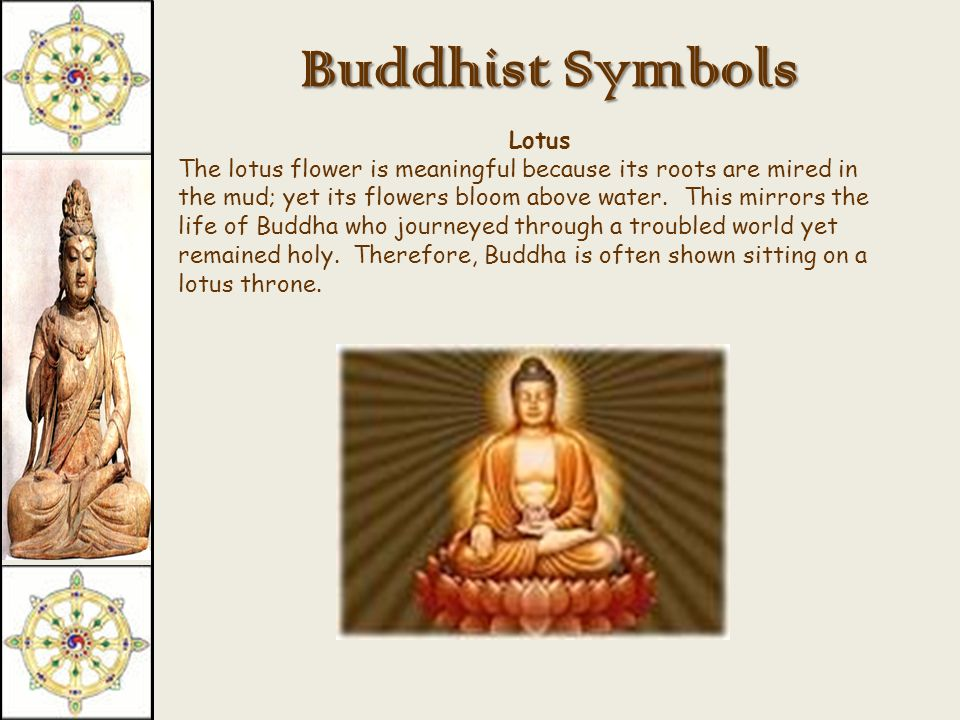 Buddhist Symbols Wheel of Law (Dharma Wheel) This sign is associated with Buddha's first sermon at a deer park.