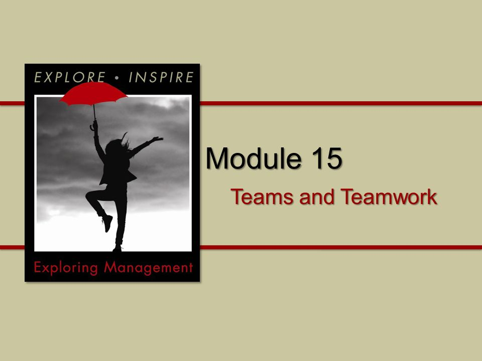 Module 15 Why is it important to understand teams and teamwork.