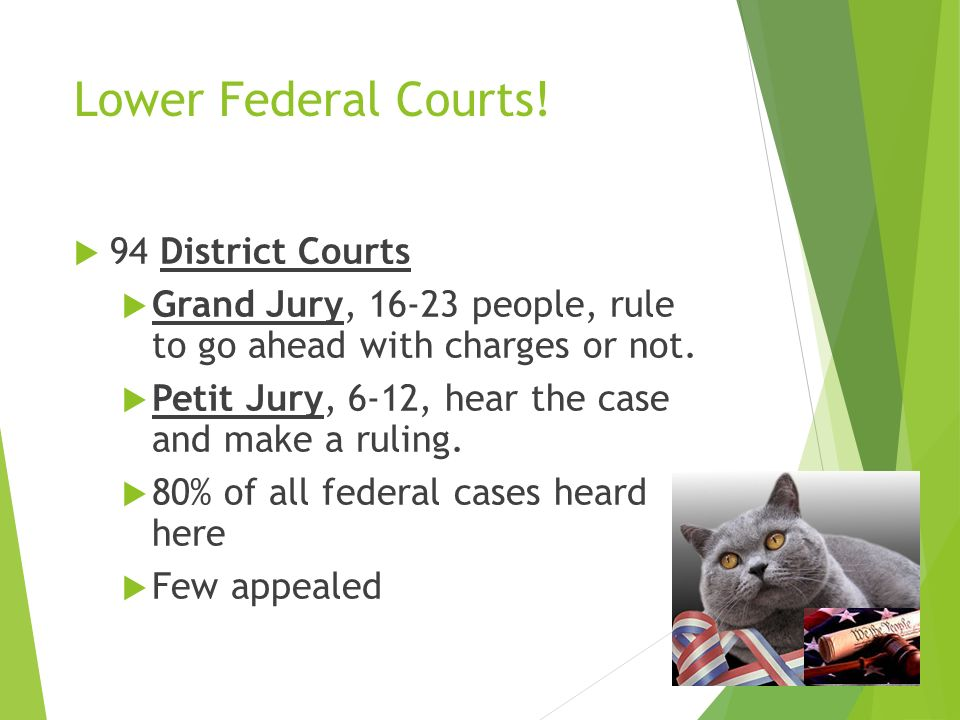 Lower Federal Courts.