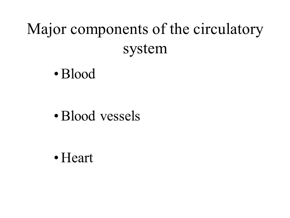 Major components of the circulatory system Blood Blood vessels Heart