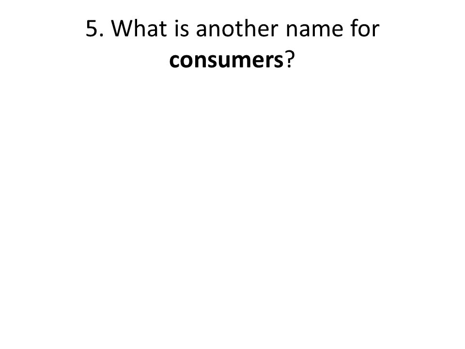 5. What is another name for consumers