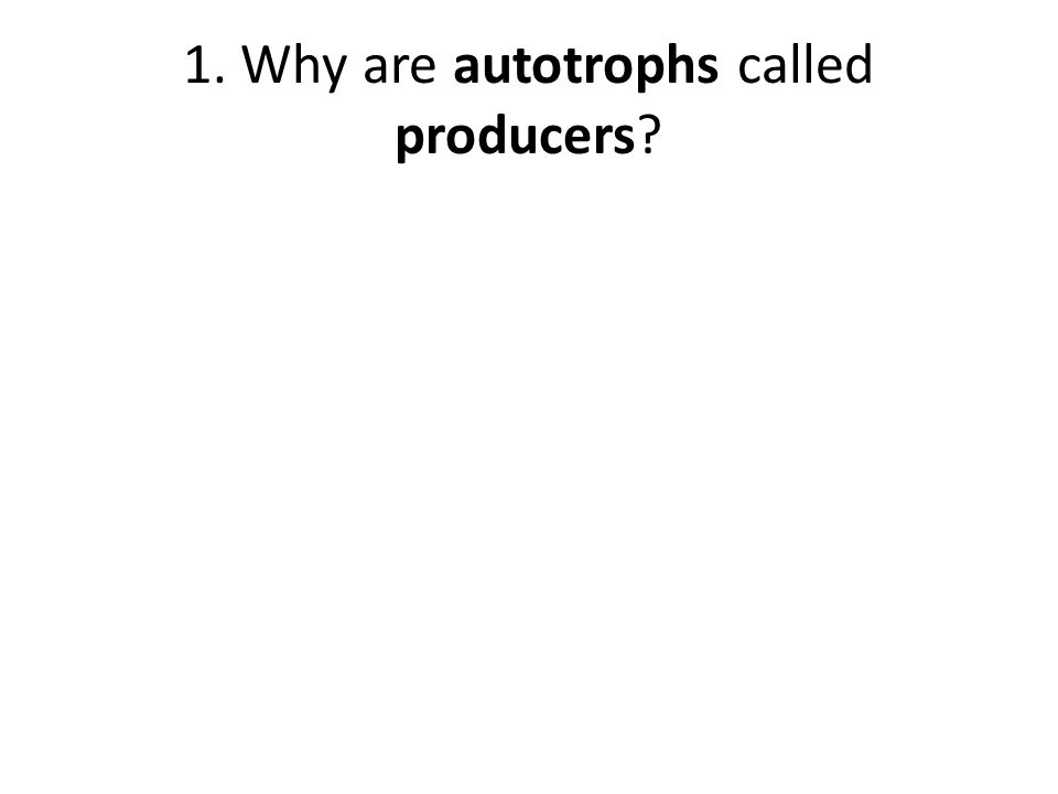 1. Why are autotrophs called producers