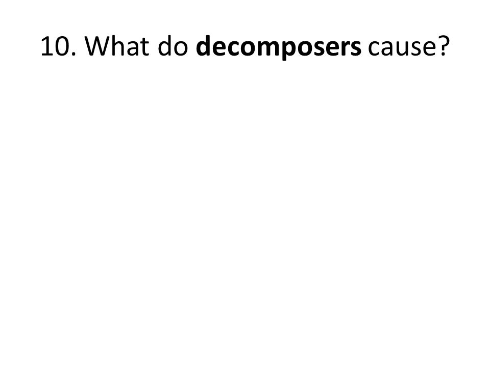 10. What do decomposers cause