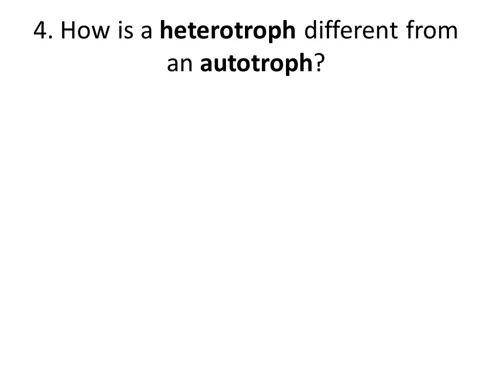 4. How is a heterotroph different from an autotroph