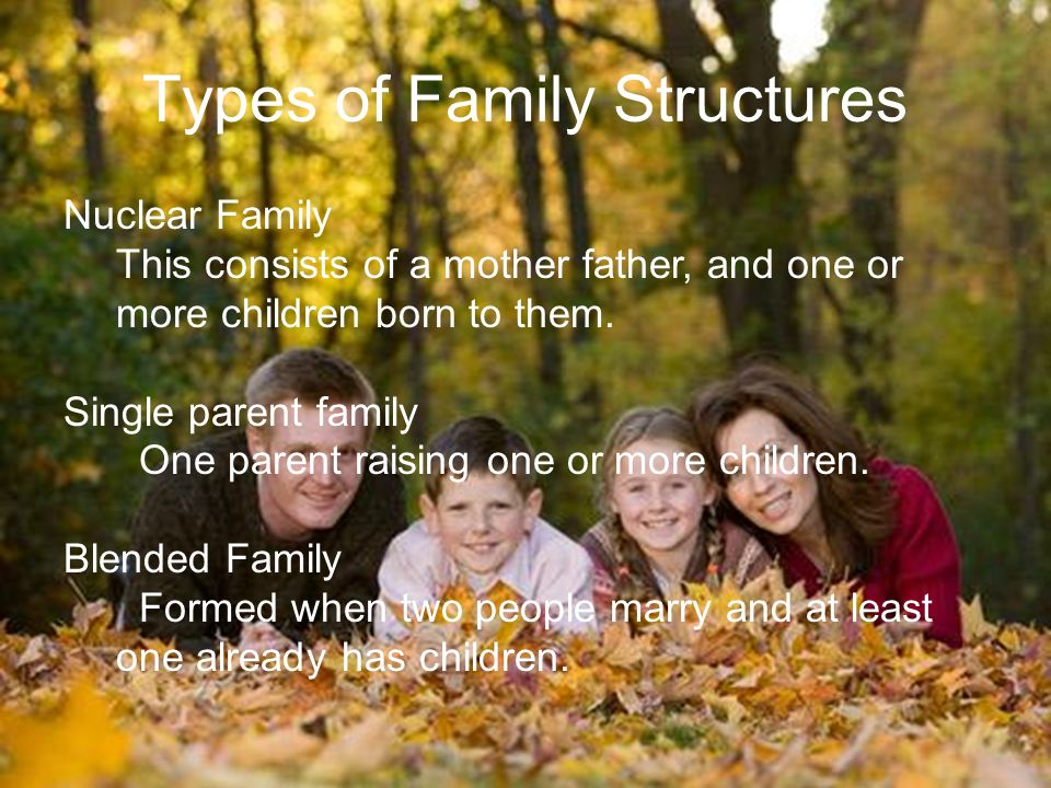 Types of Family Structures Nuclear Family This consists of a mother father, and one or more children born to them.