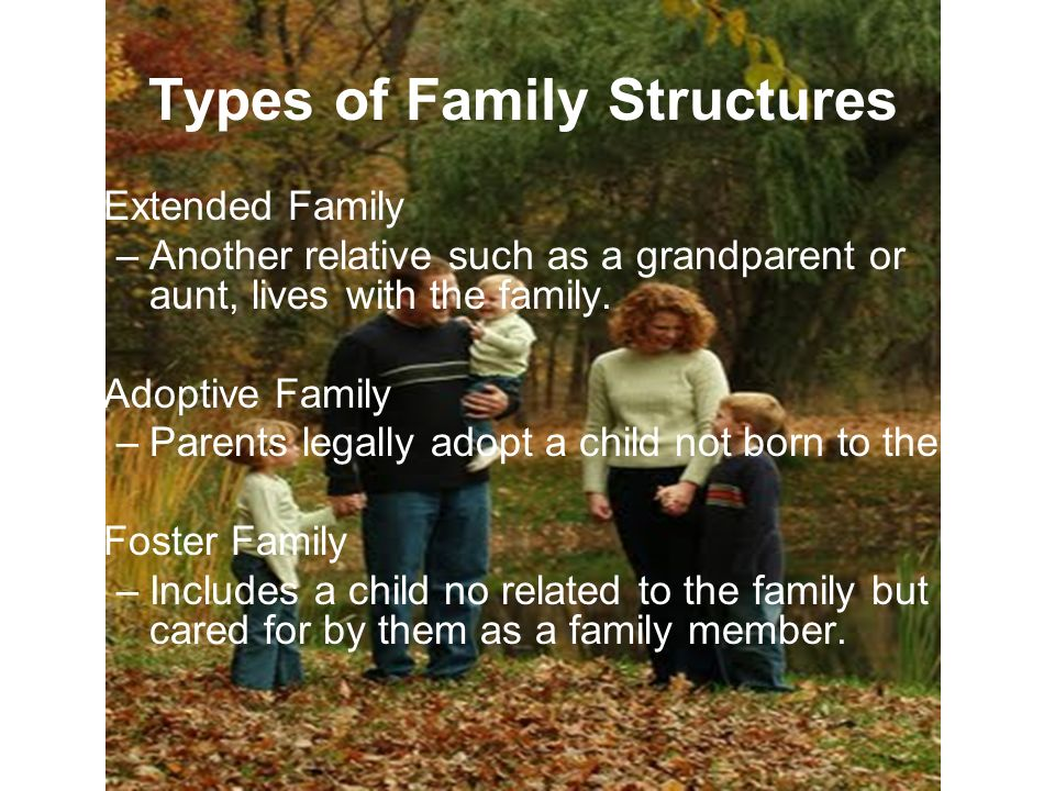 Types of Family Structures Extended Family –Another relative such as a grandparent or aunt, lives with the family.
