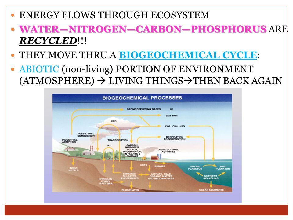 3 ENERGY ...