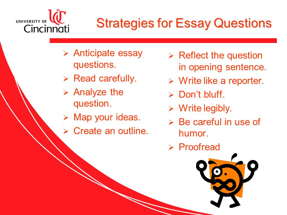 Write my essay test questions
