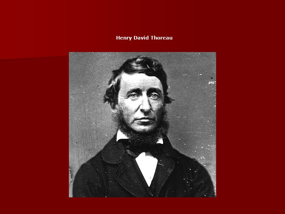 throeau essays Essays tagged: thoreau frank lloyd wright thoreau used the simile of how a day is like a  orning and evening are the spring and fall, and the noon is the summer (200.