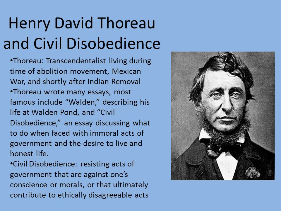 henry david thoreau an essay on civil disobedience Online dissertation uni marburg civil disobedience thoreau essay pharmacy research papers help with writing persuasive essays.