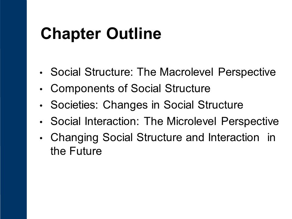 Chapter Outline Social Structure: The Macrolevel Perspective Components of Social Structure Societies: Changes in Social Structure Social Interaction: The Microlevel Perspective Changing Social Structure and Interaction in the Future