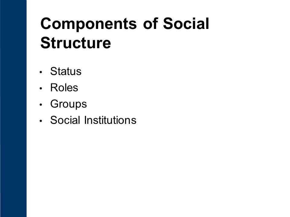 Components of Social Structure Status Roles Groups Social Institutions