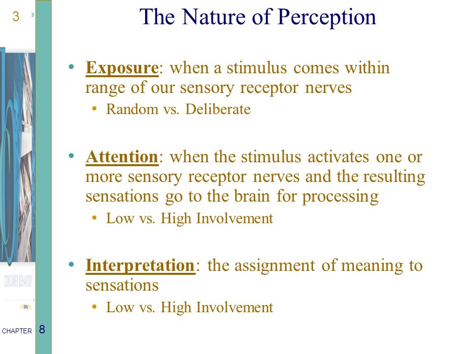 3 CHAPTER 8 The Nature of Perception Exposure: when a stimulus comes within range of our sensory receptor nerves Random vs.