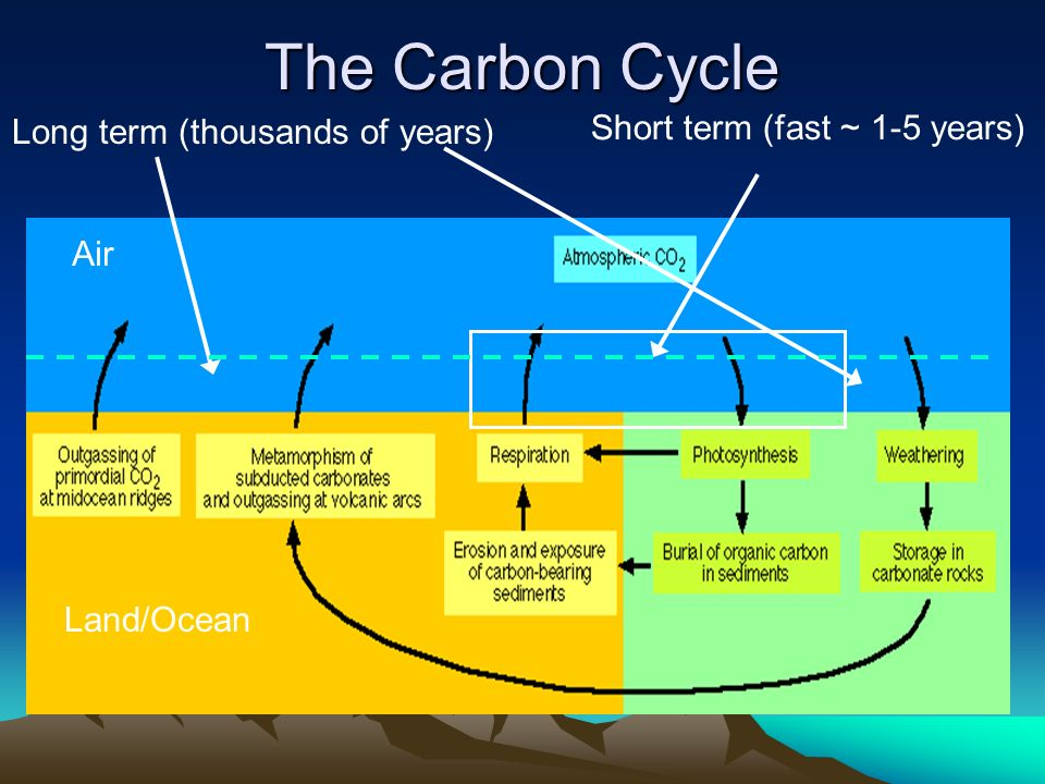 Carbon cycle lessons tes teach carbon cycle ccuart Image collections