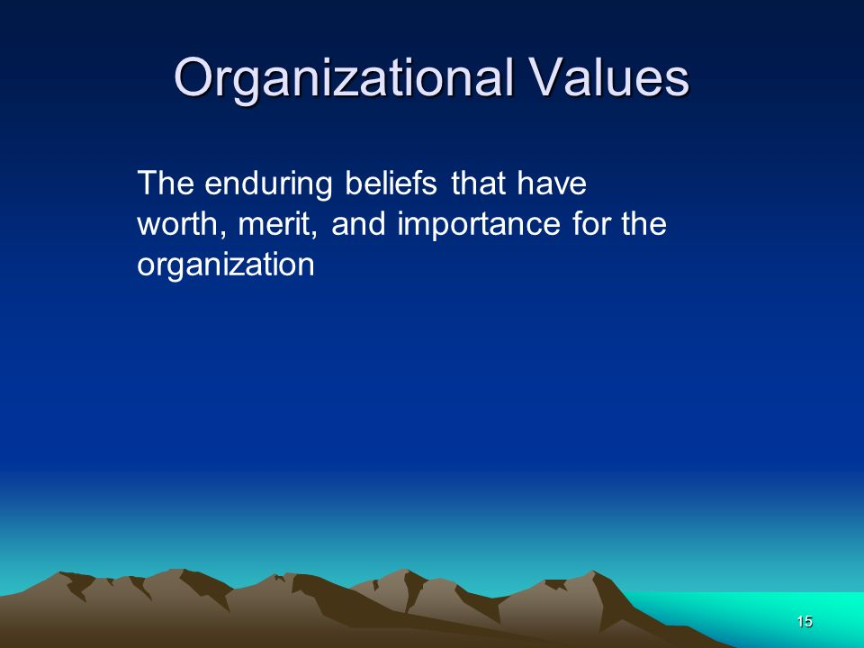 15 Organizational Values The enduring beliefs that have worth, merit, and importance for the organization