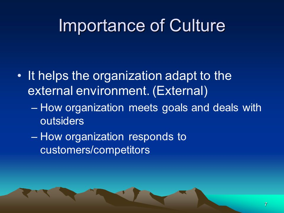 7 Importance of Culture It helps the organization adapt to the external environment. (External) –How organization meets goals and deals with outsiders
