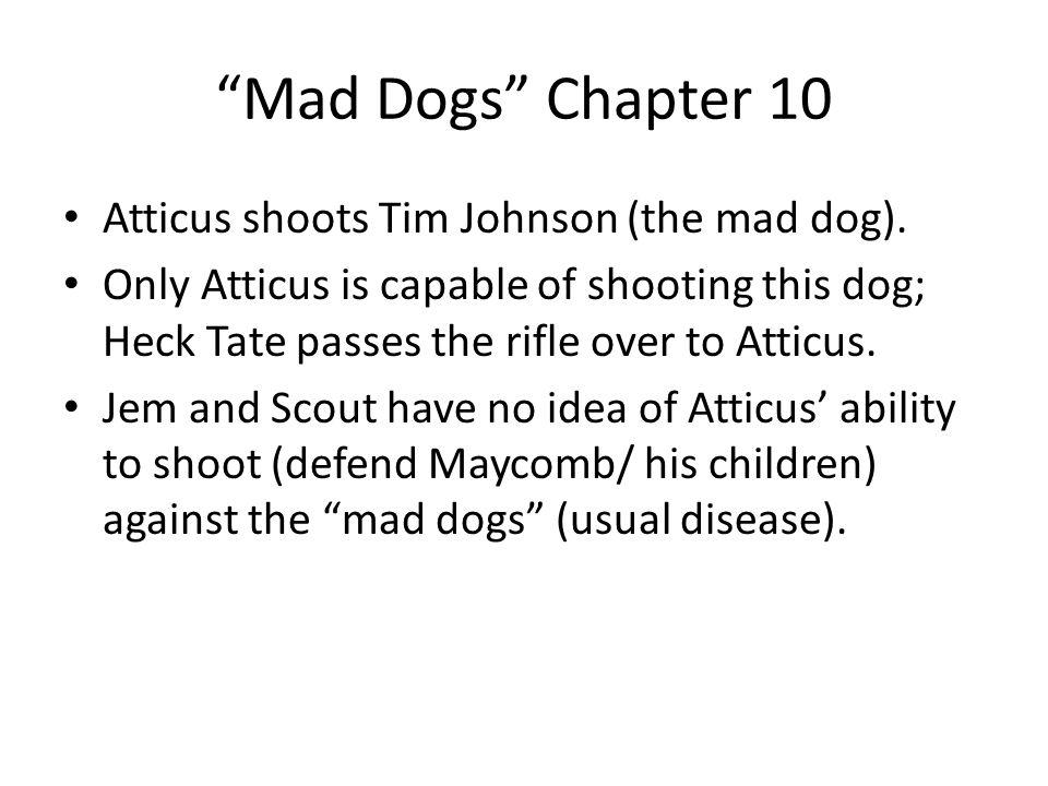 10 Mad