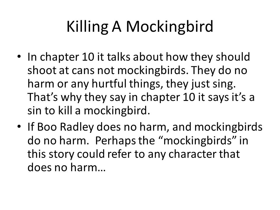 to kill a mocking bird character description