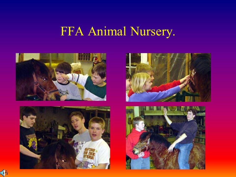 FFA Animal Nursery.