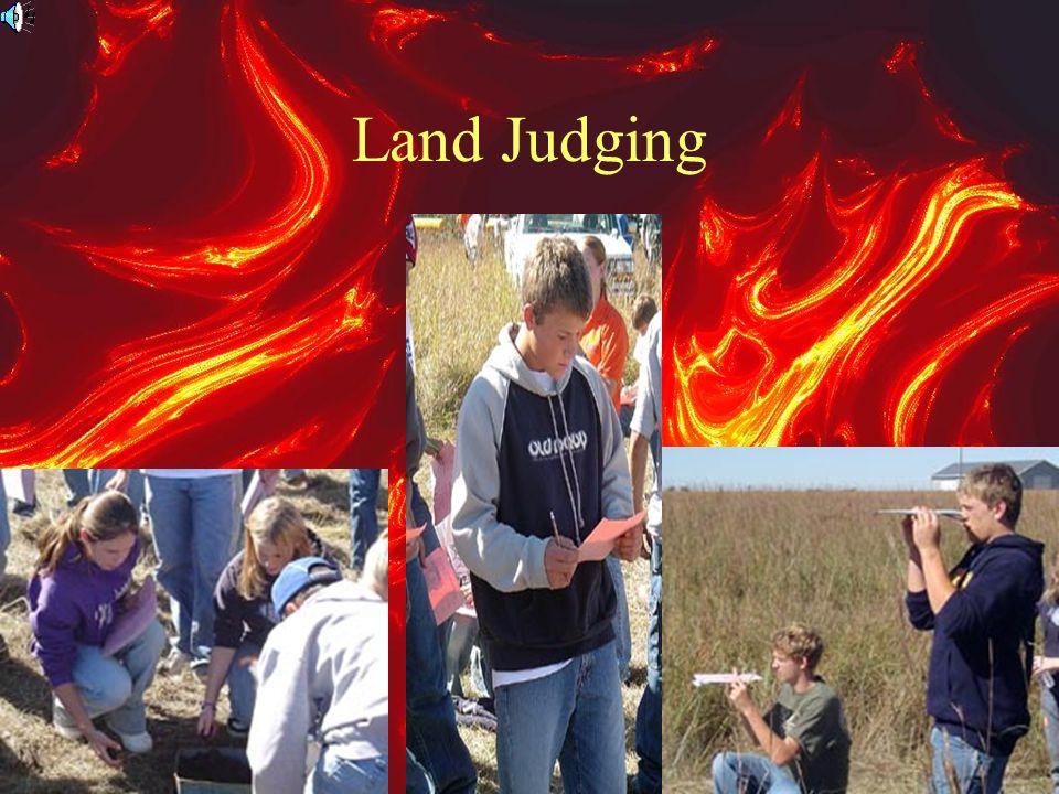 Land Judging