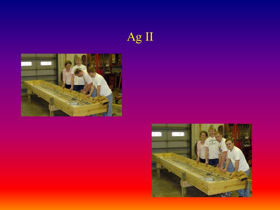 Ag II