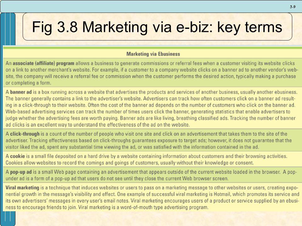 3-9 Fig 3.8 Marketing via e-biz: key terms