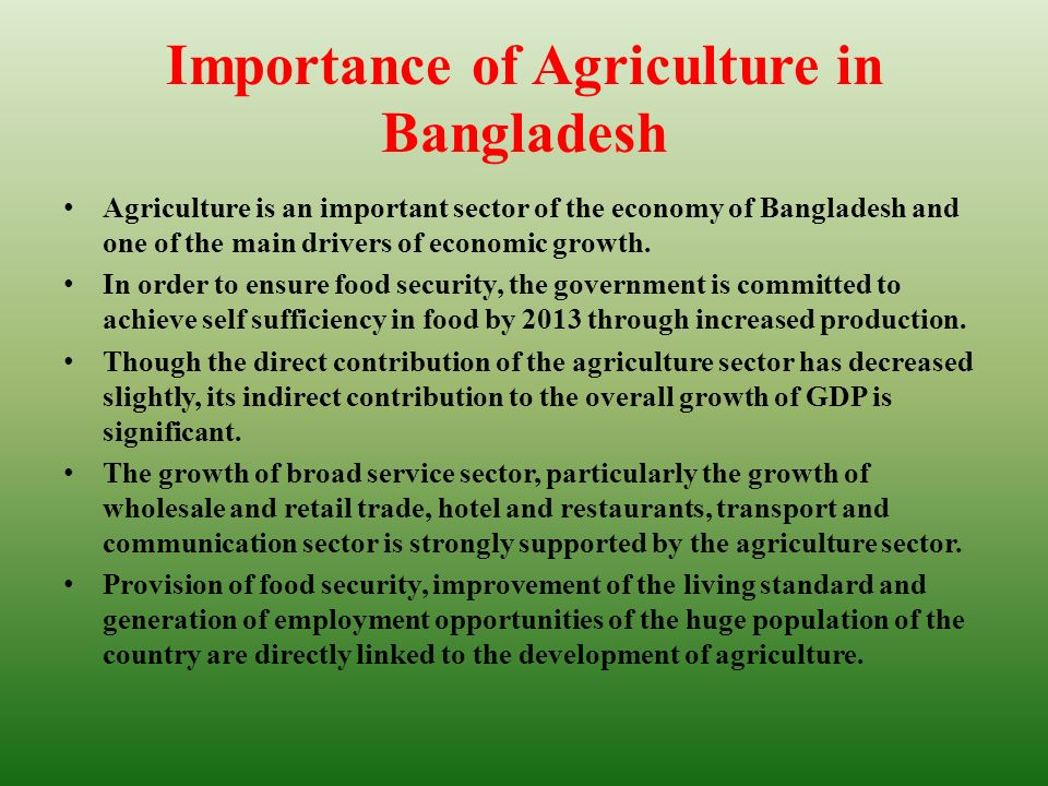contribution of agriculture in the economy of bangladesh essay According to the international monetary fund, bangladesh ranked as the 44th largest economy in the world in 2011 in ppp terms and 57th largest in nominal terms, among the next eleven or n-11 of goldman sachs and d-8 economies, with a gross domestic product of us$269 3 billion in ppp terms and us$104 9 billion in nominal terms.