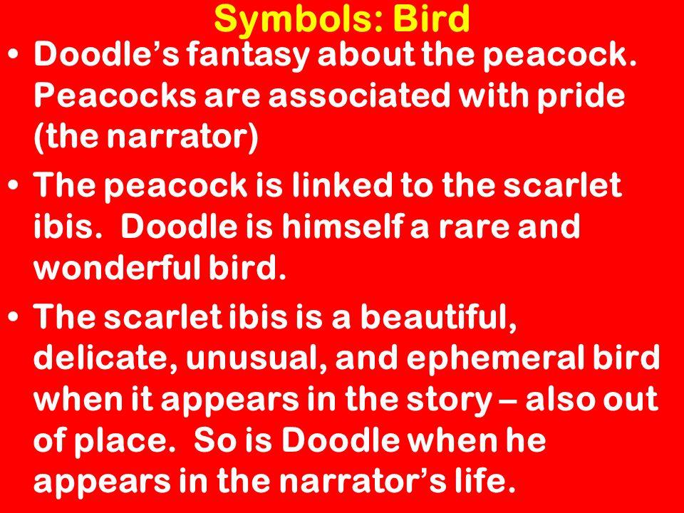scarlet ibis symbolism essay symbolism essay examples resume cv cover letter symbolism essay examples resume cv cover letter