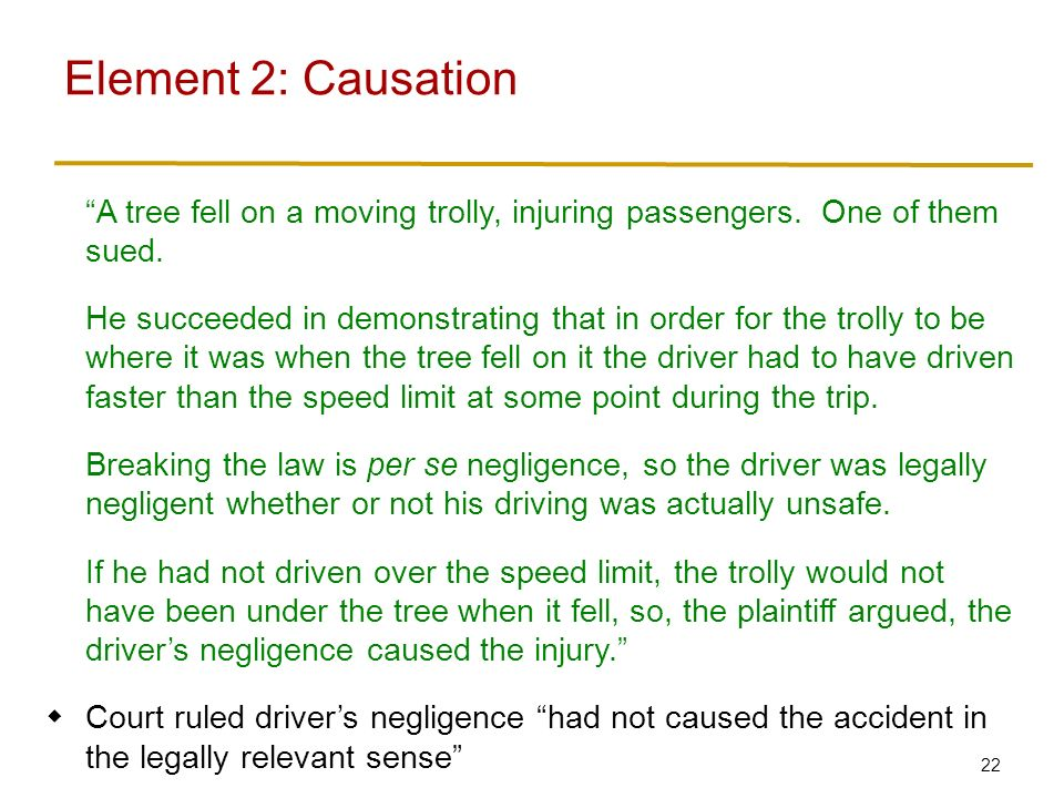 22 A tree fell on a moving trolly, injuring passengers.