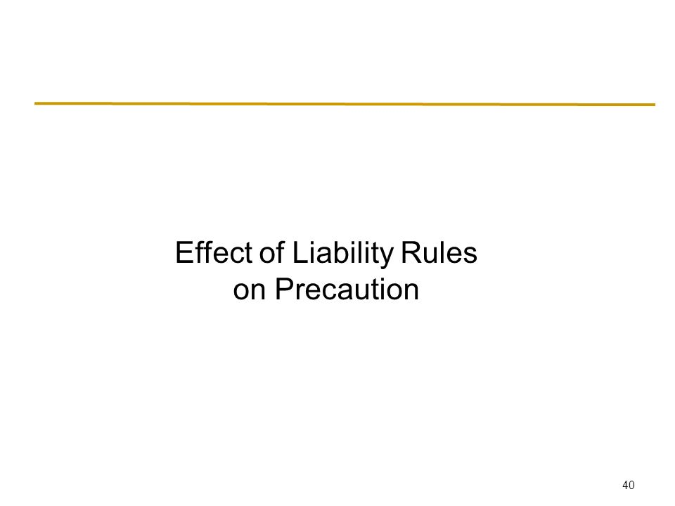 40 Effect of Liability Rules on Precaution