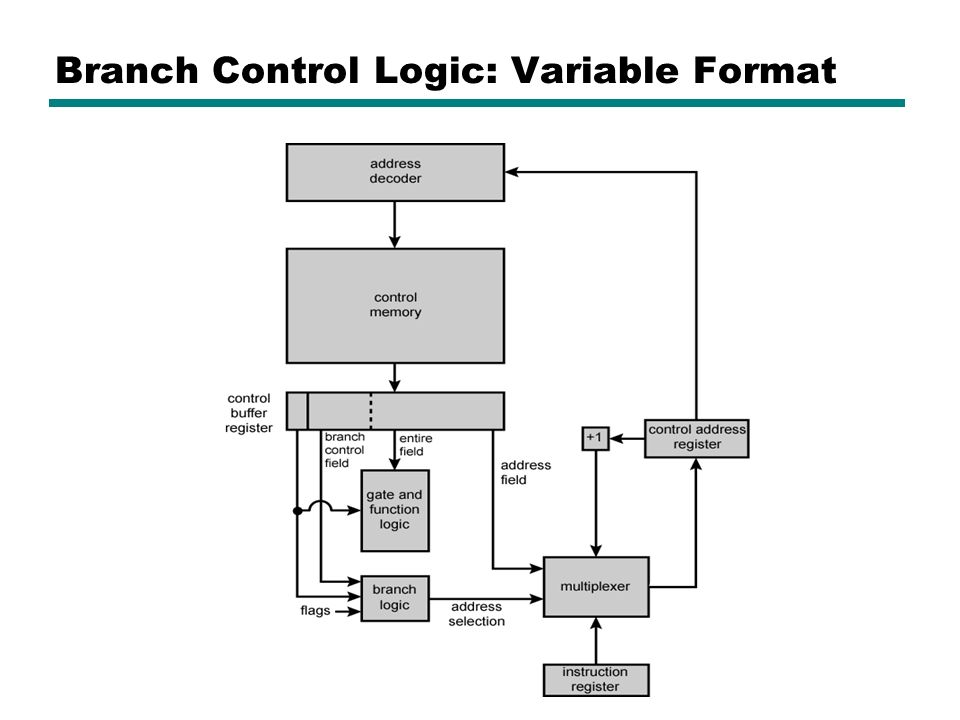 Branch Control Logic: Variable Format