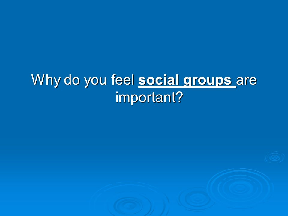Why do you feel social groups are important