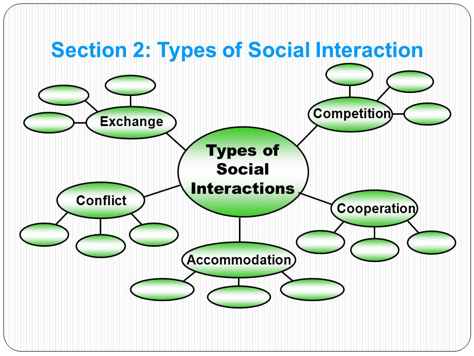 Types of Social Interactions Exchange Competition Conflict Cooperation Accommodation