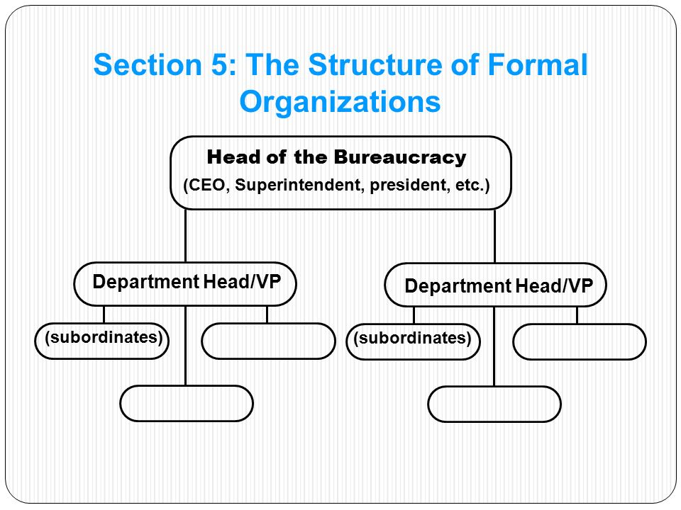 Head of the Bureaucracy (CEO, Superintendent, president, etc.) (subordinates) Section 5: The Structure of Formal Organizations Department Head/VP (subordinates)
