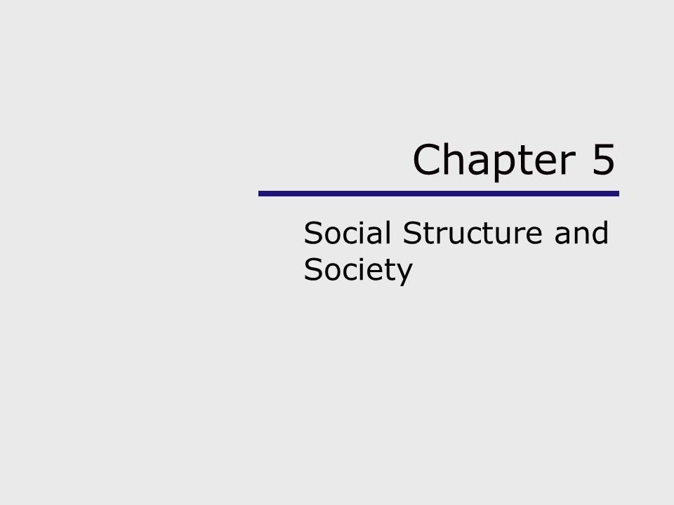 Chapter 5 Social Structure and Society