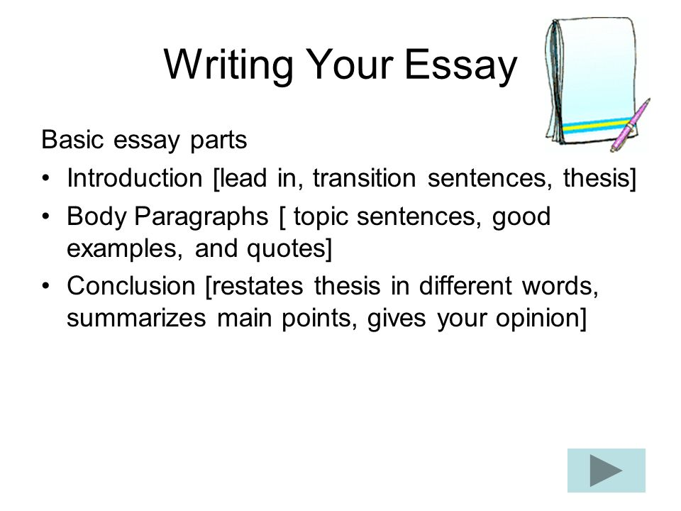 different part of essay