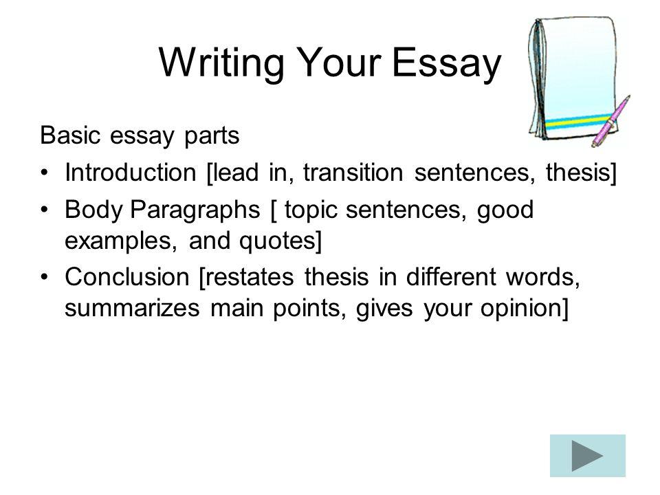 essay basics introduction