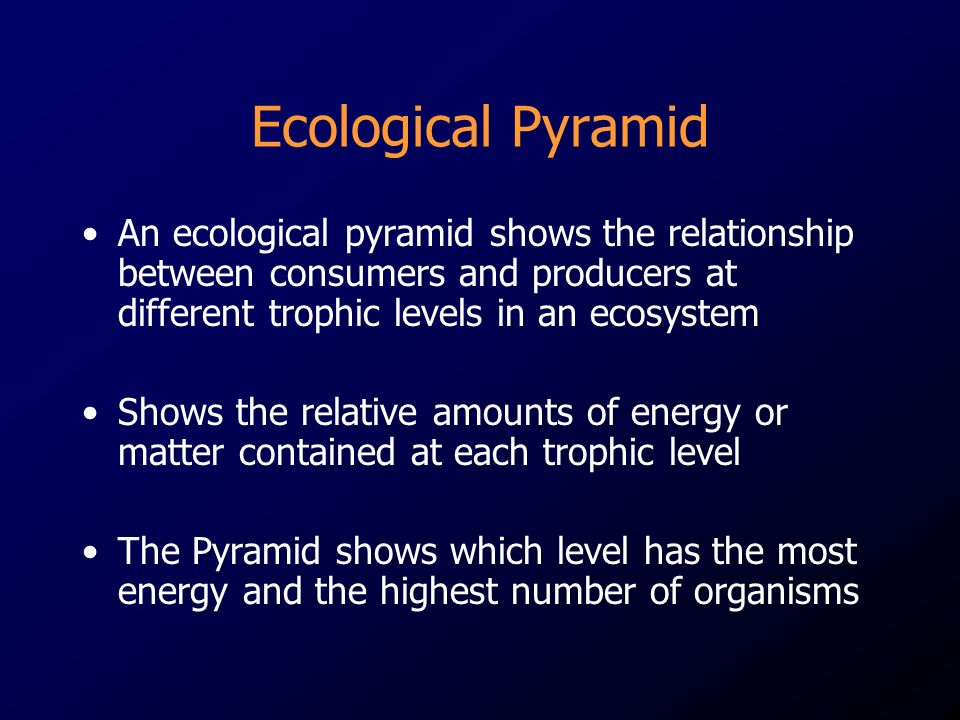 Ecological Pyramid An ecological pyramid shows the relationship between consumers and producers at different trophic levels in an ecosystem Shows the relative amounts of energy or matter contained at each trophic level The Pyramid shows which level has the most energy and the highest number of organisms
