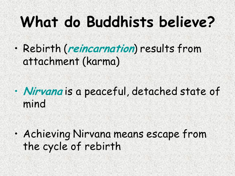 What do Buddhists believe.