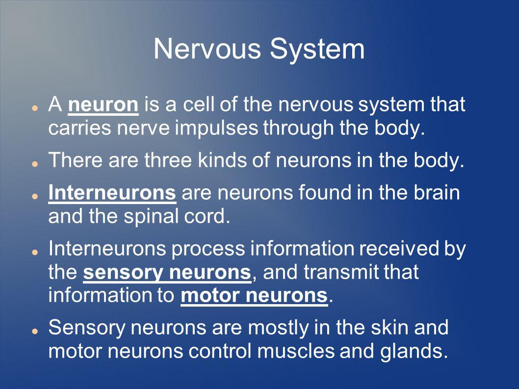 2 Nervous ...