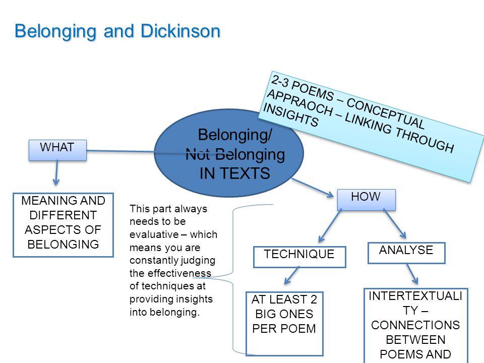 Belonging perspective essay