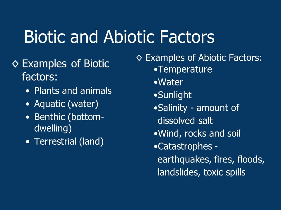 Biotic and Abiotic Factors ◊Examples of Biotic factors: Plants and animals Aquatic (water) Benthic (bottom- dwelling) Terrestrial (land) ◊Examples of Abiotic Factors: Temperature Water Sunlight Salinity - amount of dissolved salt Wind, rocks and soil Catastrophes - earthquakes, fires, floods, landslides, toxic spills