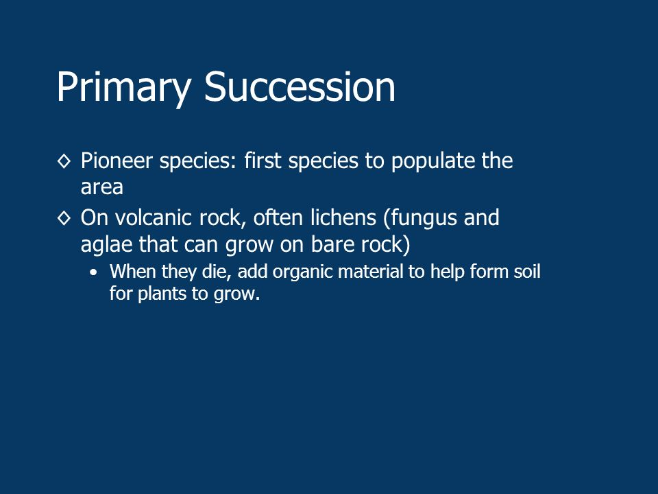 Primary Succession ◊Pioneer species: first species to populate the area ◊On volcanic rock, often lichens (fungus and aglae that can grow on bare rock) When they die, add organic material to help form soil for plants to grow.