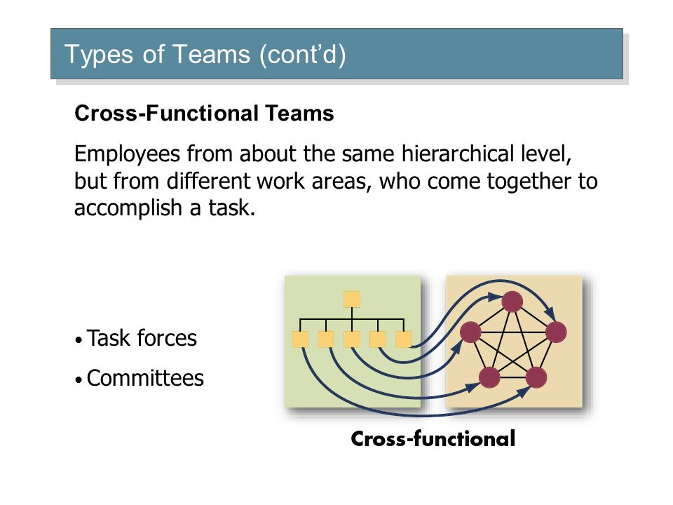 Types of Teams (cont'd) Task forces Committees Cross-Functional Teams Employees from about the same hierarchical level, but from different work areas, who come together to accomplish a task.
