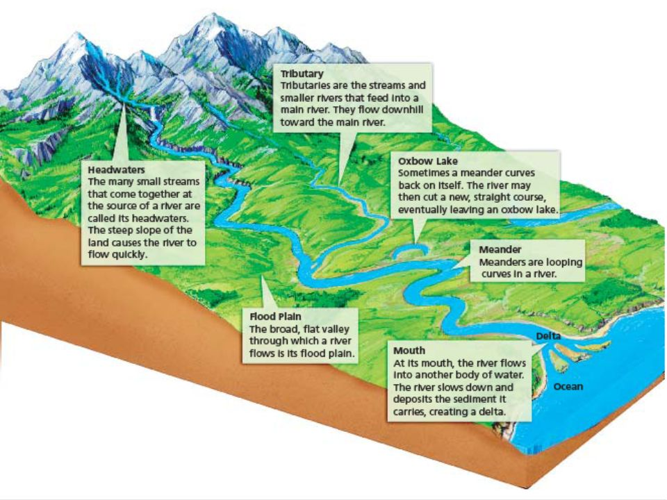 Surface Water Groundwater definition?. Key Concepts What is a ...