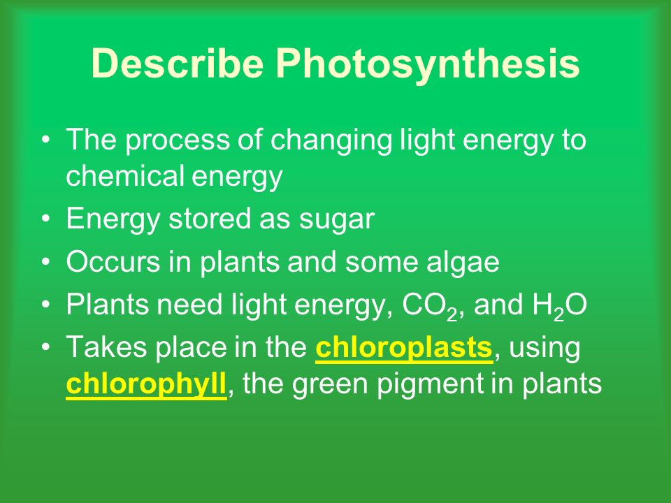 Describe Photosynthesis The process of changing light energy to chemical energy Energy stored as sugar Occurs in plants and some algae Plants need light energy, CO 2, and H 2 O Takes place in the chloroplasts, using chlorophyll, the green pigment in plantschloroplasts chlorophyll