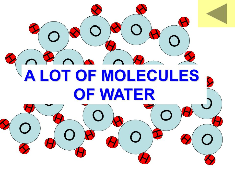 O H H O H H O H H O H H O H H O H H O H H O H H O H H O H H O H H O H H O H H O H H O H H O H H O H H O H H A LOT OF MOLECULES OF WATER